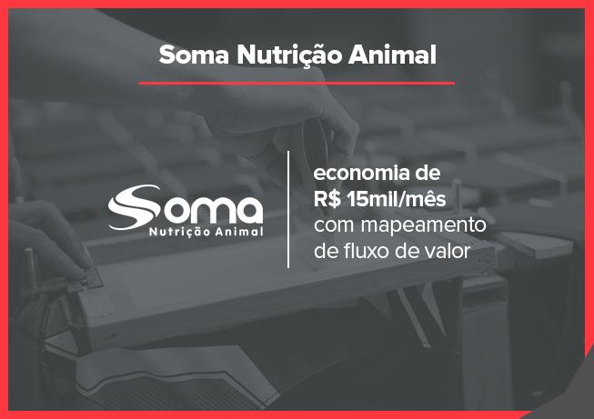 Case Soma Nutrição Animal: fluxo de valor